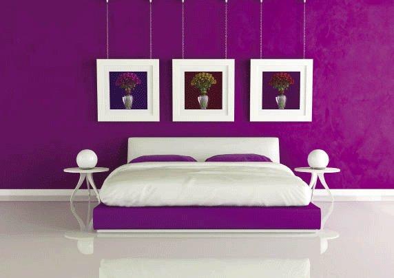 sự kết hợp tinh tế giữa hai màu tím và trắng cho sơn tường